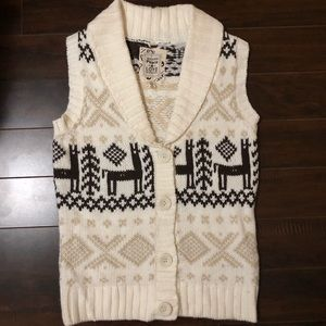Winter Sweater Vest
